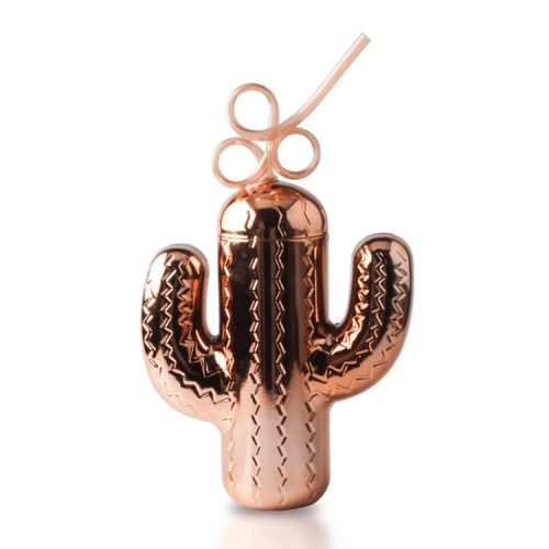 cactus cup with straw
